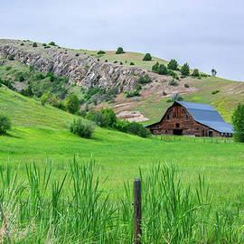Montana Ranch View by Douglas Wielfaert