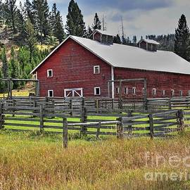Montana Red Barn by Steve Brown