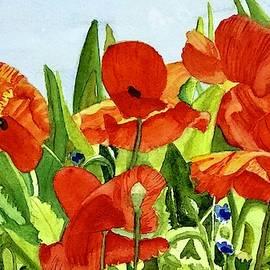 Monticello Poppies by Nicole Curreri