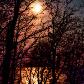 Moon Setting On Winter by Rebecca Samler