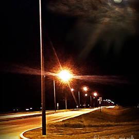 Moonlight Walk by Diamante Lavendar
