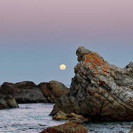 Moonrise Over Burgess Beach by Nicholas Blackwell
