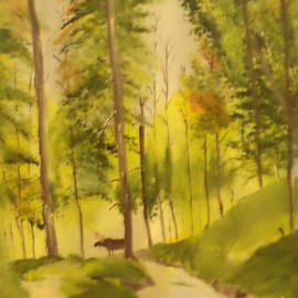 Moose In The Woods by Donald Northup