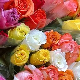More Roses by Gayle Miller