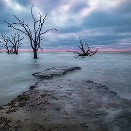Morning Calm by Darlene Smith