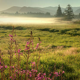 Morning Fog on the Meadows 0931 by Kristina Rinell