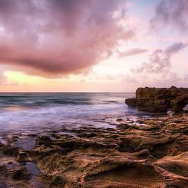 Morning Glow on Coral by Debra and Dave Vanderlaan