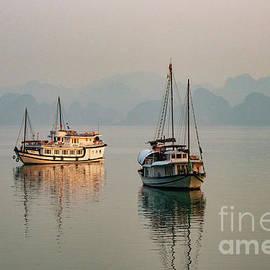 Morning Light in Bai Tu Long Bay by Bob Phillips