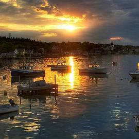 Anne Sands - Morning Light in Stonington Maine