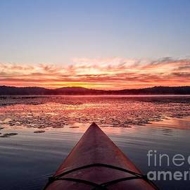 Morning Paddle - Webster Lake, Franklin, New Hampshire  by Dave Pellegrini
