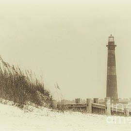 Morris Island Lighthouse - Sunlight Bliss by Dale Powell