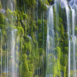 Mossbrae Falls, California 2 by Henk Meijer Photography