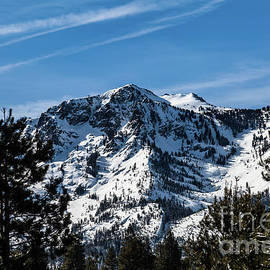 Mount Tallac Snow Covered by Webb Canepa