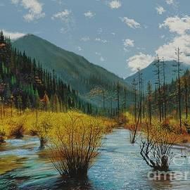 Mountain Fall Scene by Michael Nowak