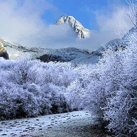 Alex Lim - Mountain Slope