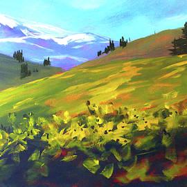 Mountain Spring by Nancy Merkle