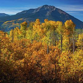 Mountains And Aspen by John De Bord
