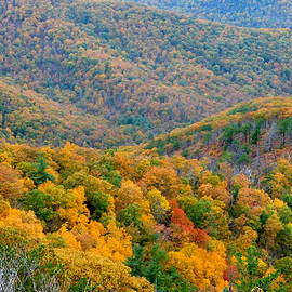 Mountainside View in Autumn by Arlane Crump