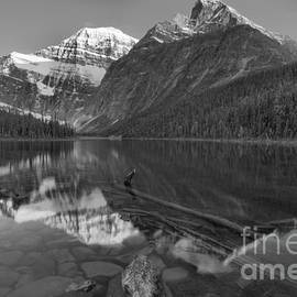 Mt. Edith Cavell Evening Reflections Black And White by Adam Jewell
