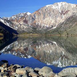 Mt. Laurel Reflection by Douglas Taylor