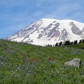 Mt. Rainier Wildflowers - 2 by Christy Pooschke
