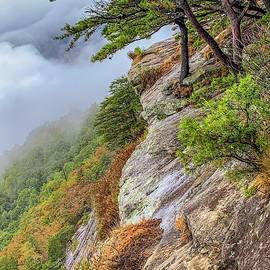 Mt. Yonah Cloudy Summit by Keith Smith