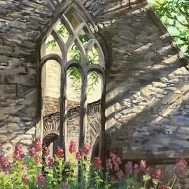 Muckross Abbey by Anda Kett