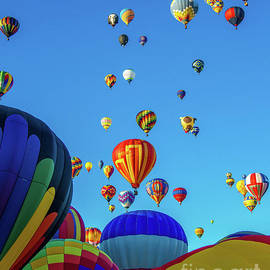 Multi Colored Balloons by Stephen Whalen
