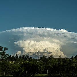 Mushroom Cloud by Karen Slagle