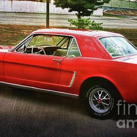 Mustang by Joan Bertucci