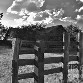 My Side Of The Fence by Janet Marie