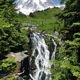 Myrtle Falls runs thru meadows above Paradise  by Steve Estvanik