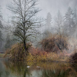 Mystic Lake by Jacqui Boonstra
