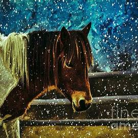 Mystic Mare by Laurie's Intuitive