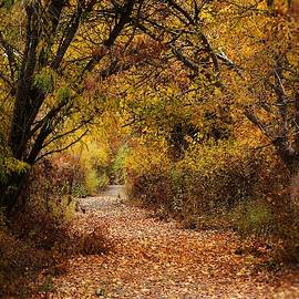 Mythical Autumn by Lkb Art And Photography