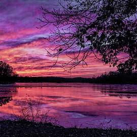 Nature's Artistry by Wes Iversen