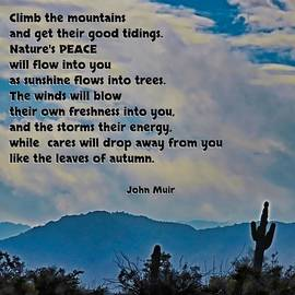 Nature's Peace by Judy Kennedy