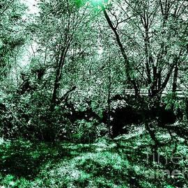 Natures Remedy by Amanda Kessel