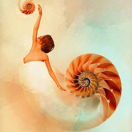 Nautilus by Mihaela Pater