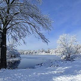 Lyuba Filatova - Near Lake Waban, Winter