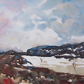Near Skagway III by Mary Deziel