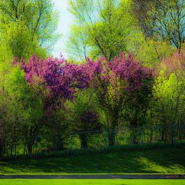 Nebraska Springtime by Edward Peterson