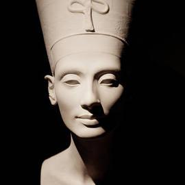 Nefertiti by Sue Harper
