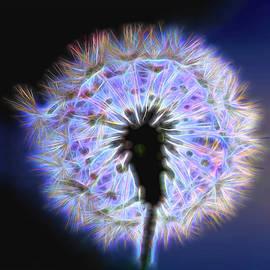 Neon Dandelion  by Kay Brewer