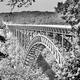 New River Gorge And Bridge Black And White by Lisa Wooten