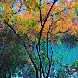 New York in Autumn - The Lake at Central Park by Miriam Danar