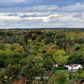 Niagara River Overlook Panorama