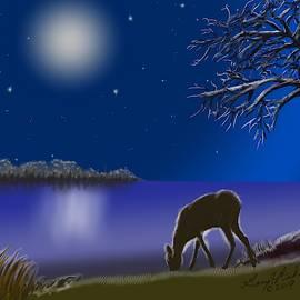 Night Glow by Gary F Richards