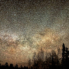 Night Sky in June by Donna Kennedy