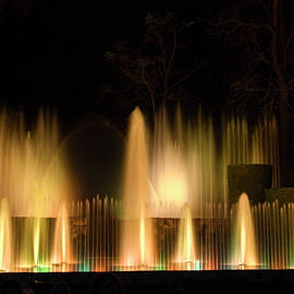 Nighttime Fountains by Sally Weigand